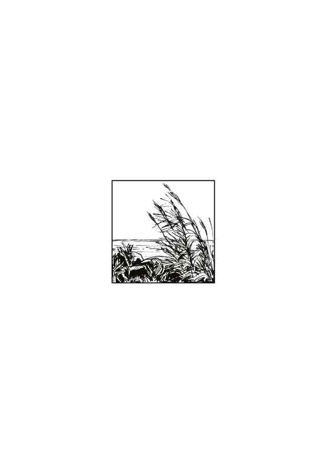 AB1550n1 (trascinato) 6